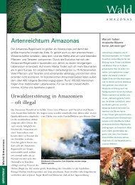 Artenreichtum Amazonas - Greenpeace
