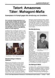 Tatort Amazonas - Täter Mahagoni-Mafia - Greenpeace