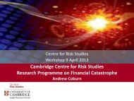 Cambridge Centre for Risk Studies Research Programme on ...