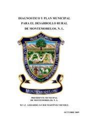diagnostico y plan municipal para el desarrollo rural de ...