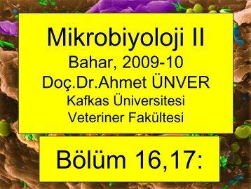 16,17, Bartonella, Pasteurella inf. - Kafkas Üniversitesi