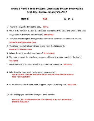 Circulatory and Respiratory System TEST Study Guide