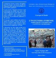 Brochure IF.pdf - Dipartimento di Analisi e Progettazione Strutturale