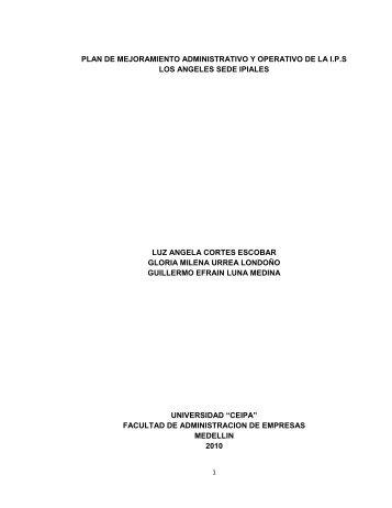 plan de mejoramiento administrativo y operativo de la ips los ...