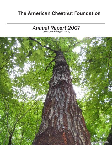 Annual Report 2007 The American Chestnut Foundation