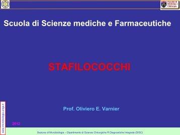STAFILOCOCCHI - Sezione di Microbiologia