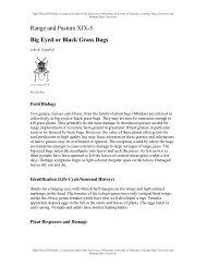 Range and Pasture XIX-5 Big Eyed or Black Grass Bugs