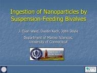 Marine Aggregates Facilitate the Ingestion of Manufactured ...