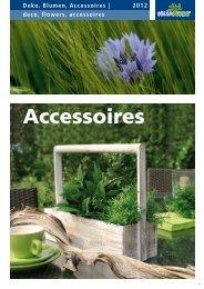 Deko, Blumen, Accessoires