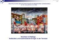 Schnitzel mit Beilagen - St.-Vincentius-Krankenhaus Speyer