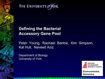 Defining the Bacterial Accessory Gene Pool