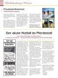 Salzburg - Reitwelt - Seite 6