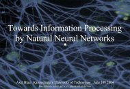 Towards Information Processing by Natural Neural Networks