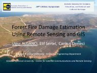 Forest Fire Damage Estimation Using Remote ... - Conferences