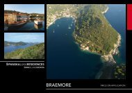 Braemore Group