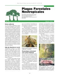 Plagas Forestales Neotropicales - Catie