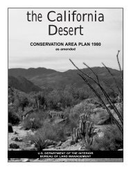 The California Desert Conservation Area Plan 1980 as amended
