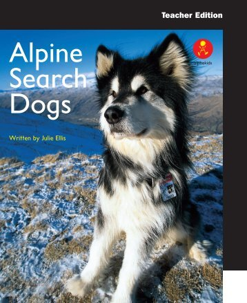 Alpine Search Dogs