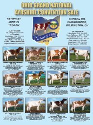 OHIO GRAND NATIONAL AYRSHIRE CONVENTION SALE