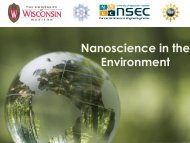 Nanoscience in the Environment