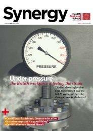 Issue 9 (November 2009) - Cardiff Business School - Cardiff University