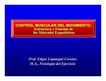 CONTROL MUSCULAR DEL MOVIMIENTO: Estructura ... - Saludmed