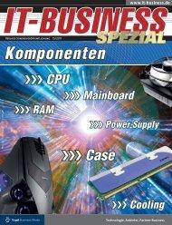 991 - IT-Business