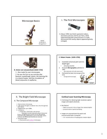Using the Microscope Rules for Using the Microscope