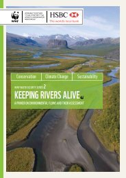 KEEPING RIVERS ALIVE - WWF UK