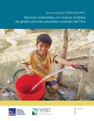 Servicios sostenibles con nuevos modelos de gestión par - WSP