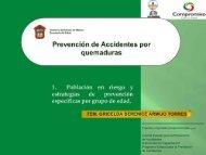 Prevención de accidentes por quemaduras - Secretaría de Salud ...