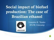 Social impact of biofuel production: The case of Brazilian ... - mageep
