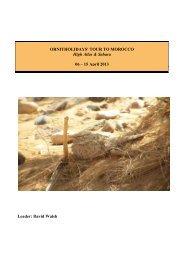 Morocco - High Atlas & Sahara - 06 - 15 April 2013 - Ornitholidays