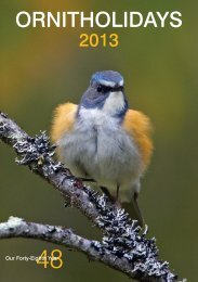 Download 2013 Brochure (.pdf) - Ornitholidays