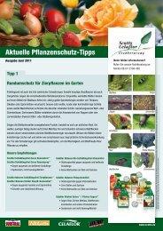 Ausgabe Juni 2011 - Kiebitzmarkt Framersheim