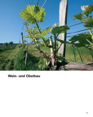 Tätigkeitsbericht 2006 - Teil 3 - LK Wien
