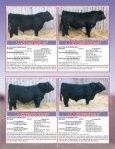 SKOR Simmental Bull Sale - Transcon Livestock Corporation - Page 6