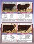 Skor Simmentals Bull Sale - Transcon Livestock Corporation - Page 5