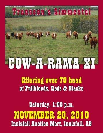 NOVEMBER 20, 2010 - Transcon Livestock Corporation