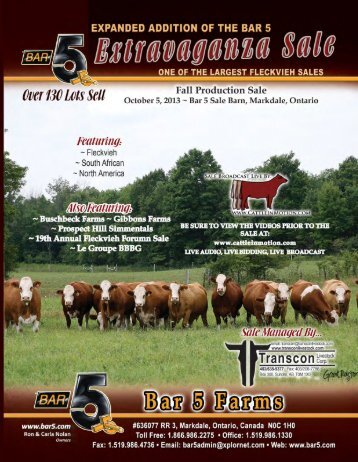 BAR 5 SALES BARN - At the Farm - Transcon Livestock Corporation