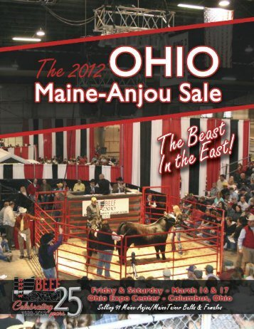 Maine Anjou Sale - PrimeTIME AgriMarketing