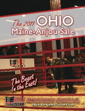 Bull Buyers Take Note! - PrimeTIME AgriMarketing