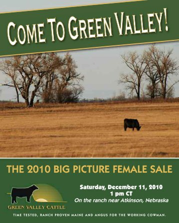 THE 2010 BIG PICTURE FEMALE SALE - PrimeTIME AgriMarketing