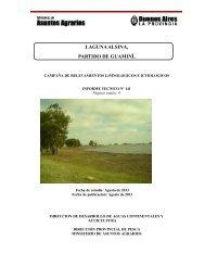 Laguna Alsina, Partido de Guamini. Informe Técnico Nº141, p.9