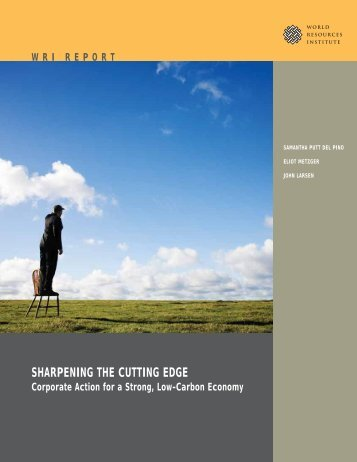 SHARPENING THE CUTTING EDGE - World Resources Institute