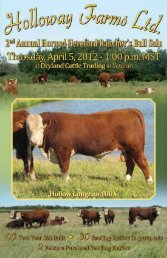 Download full PDF - Dryland Cattle Trading Corp