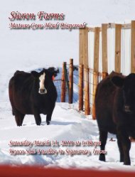 Lot - Dwyer Cattle Services