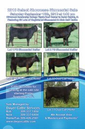 2010 Select Showcase Simmental Sale - Dwyer Cattle Services
