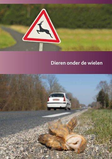 Brochure 'Dieren onder de wielen' - Zoogdierenwerkgroep