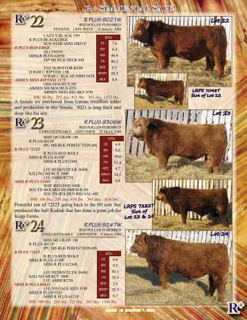 Lots 22-35 - SaskLivestock